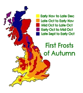 First-frosts vegetableseeds.net