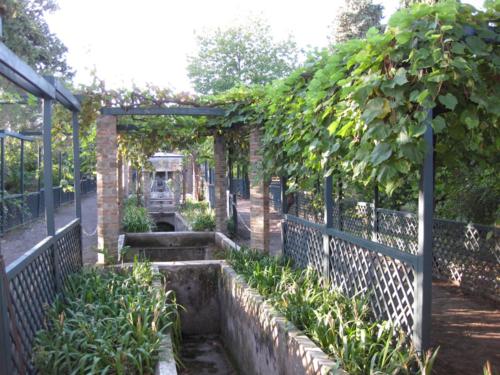 Garden-of-loreius-tiburtinus-in-pompeii