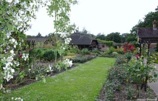 140218 tilgate garden