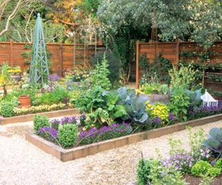From better homes and gardens, colourful vegetable gardens