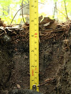 Soil profile umichedu